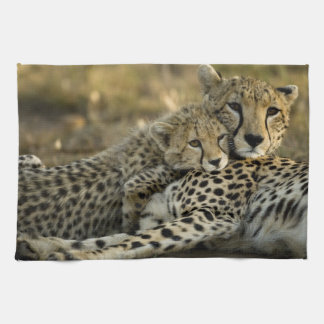 Cheetah, Acinonyx jubatus, with cub in the Masai 2 Tea Towel