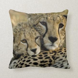 Cheetah, Acinonyx jubatus, with cub in the Masai 2 Throw Cushion