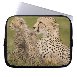 Cheetah, Acinonyx jubatus, with cub in the Masai Laptop Sleeves