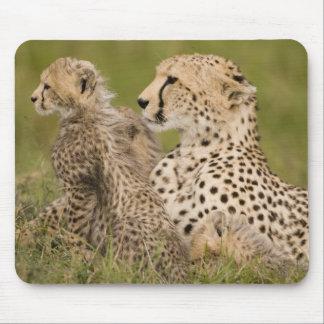 Cheetah Acinonyx jubatus with cub in the Masai Mousepad