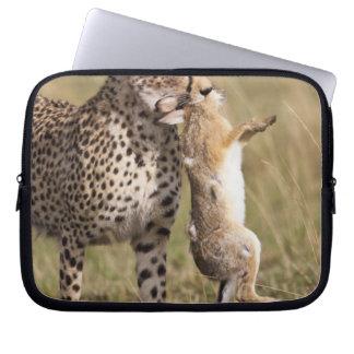 Cheetah (Acinonyx jubatus) with jackrabbit kill, Laptop Sleeve