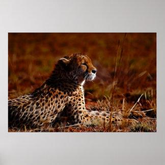 Cheetah and God Poster