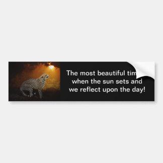 Cheetah beauty and sunset bumper sticker
