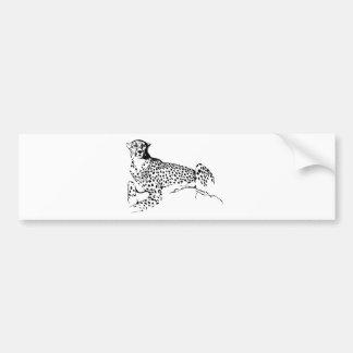 Cheetah Bumper Sticker