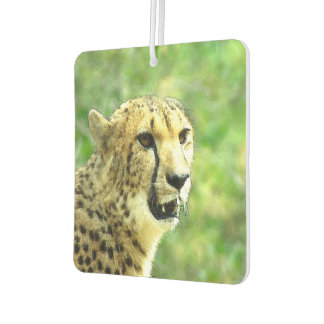 Cheetah Car Air Freshener