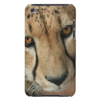 Cheetah Cat  iTouch Case Barely There iPod Covers