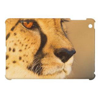 Cheetah Close-up of a female iPad Mini Cover