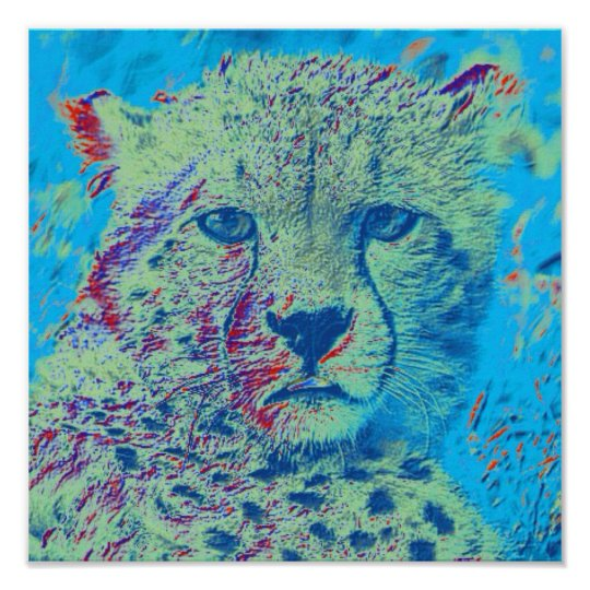 Cheetah colourful version poster