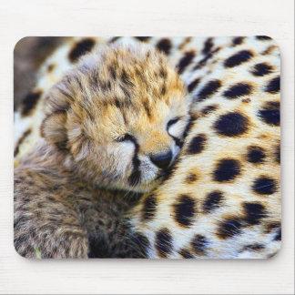 Cheetah Cub Mouse Mat