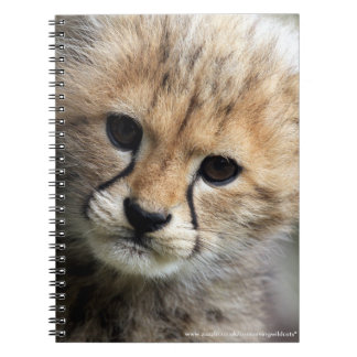 Cheetah cub spiral note books