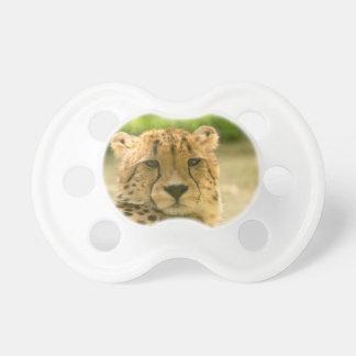 Cheetah Dummy