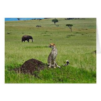Cheetah elephant card