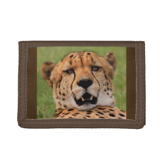 Cheetah Face Brown TriFold Nylon Wallet