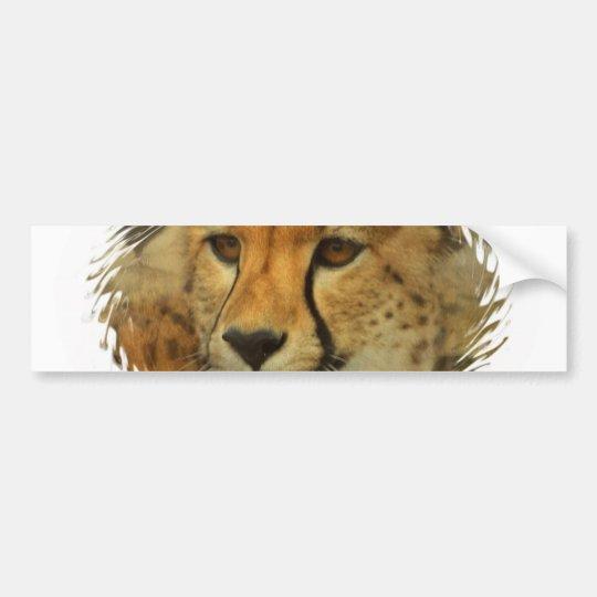 Cheetah Face Bumper Sticker