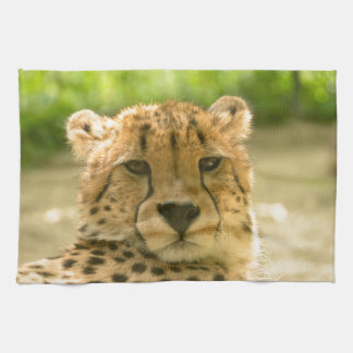 Cheetah Hand Towels