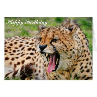 Cheetah - Happy Birthday Greeting Card