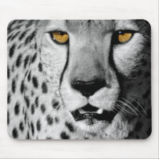 Cheetah in black and white mouse mat