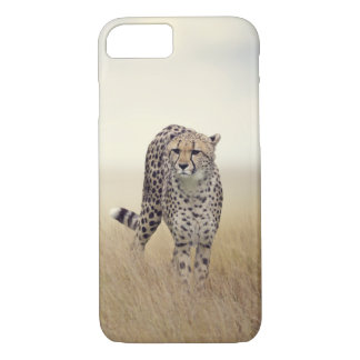 Cheetah iPhone 7 Hard Case