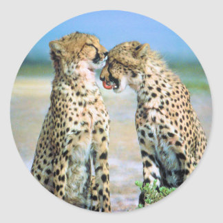 Cheetah Kisses Classic Round Sticker