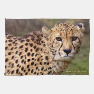 Cheetah Kitchen Towel