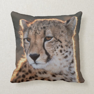 Cheetah looking away cushion