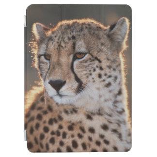 Cheetah looking away iPad air cover