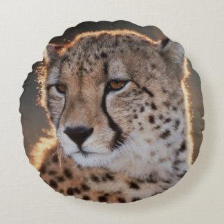 Cheetah looking away round cushion