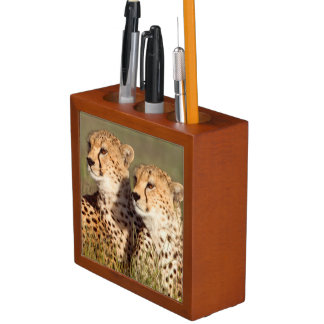 Cheetah Lying In Grass, Ngorongoro Conservation Desk Organiser
