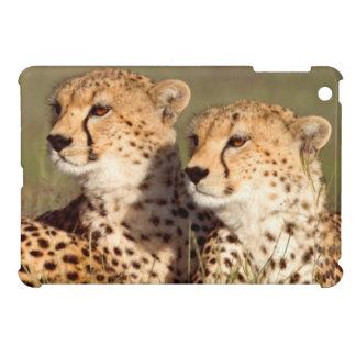 Cheetah Lying In Grass, Ngorongoro Conservation iPad Mini Covers