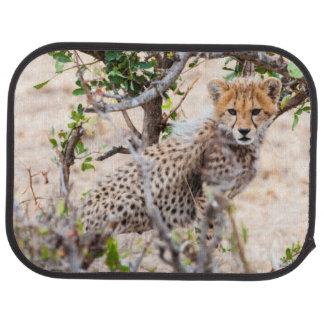 Cheetah, Maasai Mara National Reserve Car Mat