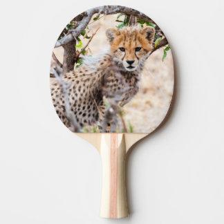 Cheetah, Maasai Mara National Reserve Ping Pong Paddle