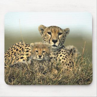 Cheetah Mom and Cub Mousepad