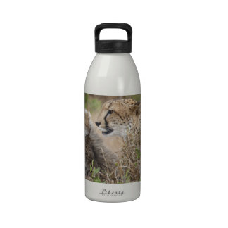 Cheetah Mother and Cub Drinking Bottles