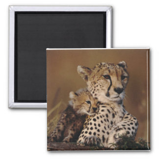 Cheetah Mother and Cub Magnet
