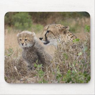 Cheetah Mother and Cub Mousepad