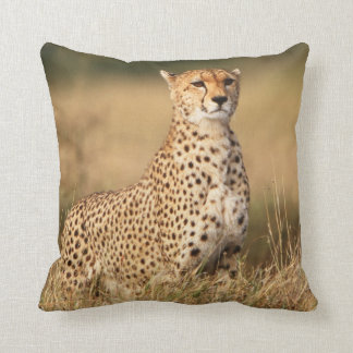 Cheetah on small mound for better visibility cushion