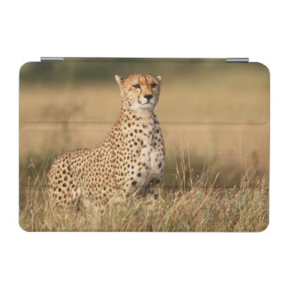 Cheetah on small mound for better visibility iPad mini cover