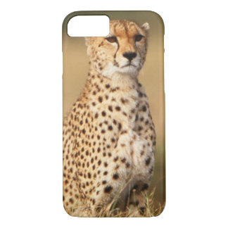 Cheetah on small mound for better visibility iPhone 8/7 case