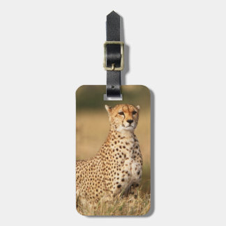 Cheetah on small mound for better visibility luggage tag