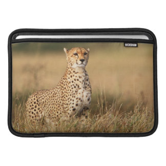 Cheetah on small mound for better visibility MacBook sleeve