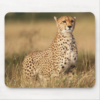 Cheetah on small mound for better visibility mouse mat