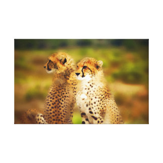 Cheetah Pair Canvas Print