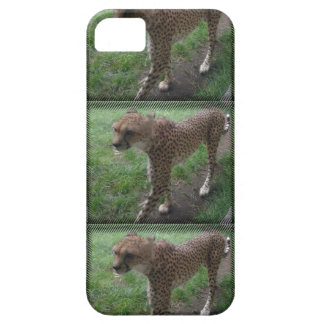 Cheetah phonecover iPhone 5 cases