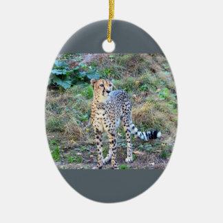 Cheetah Photo Christmas Ornament