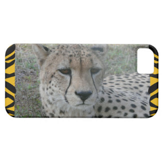 Cheetah Photo Portrait  Iphone case