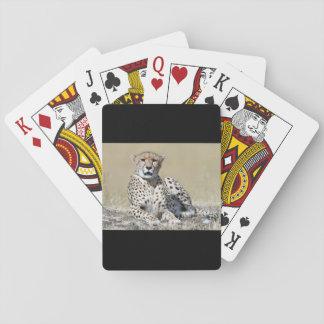 Cheetah Playing Cards