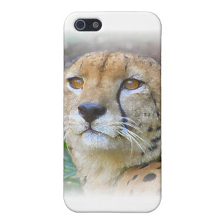 Cheetah portrait cover for iPhone 5/5S