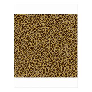 Cheetah Print Postcard
