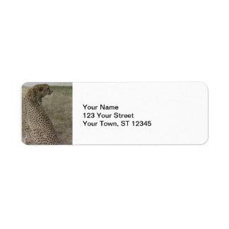 Cheetah Profile Return Address Label