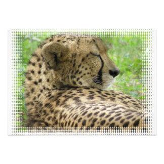 Cheetah Resting Invitation